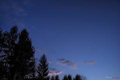 Dark Sky (fs999) Tags: 100iso fs999 fschneider aficionados zinzins pentaxist pentaxian pentax k1 pentaxk1 fullframe justpentax flickrlovers ashotadayorso topqualityimage topqualityimageonly artcafe pentaxart corel paintshop paintshoppro 2018ultimate paintshoppro2018ultimate ciel sky himmel bleu blue blau pentaxfa35mmf2al fa35 35mm f2 f20 fa35f2