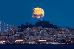 Warrior's Moon (rootswalker) Tags: fullmoon coittower sanfrancisco goldenstatewarriors moonrise nikon600mmifed bluehour