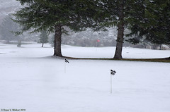 Under Par (walkerross42) Tags: golf course snow flag trees spring montpelier idaho