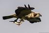 Osprey with prey (markus.jacobs1899) Tags: 300mm d500 insekten natur tele tiere vögel wildtiere nikon osprey fischadler ミサコ ニコン 鳥