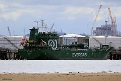 J78A0542 (M0JRA) Tags: sea beach shells sand waves water banking tide ships docks
