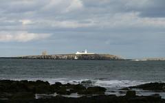 Inner Farne (RoystonVasey) Tags: canon eos 400d 70300mm usm zoom northumberland seahouses bamburgh beach sea sand surf