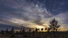 Mount Laguna Sunset Among the Pine Trees Timelapse (slworking2) Tags: mountlaguna california sandiego meadow sunset clouds nature trees pines timelapse sky cloudy