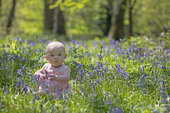 You caugth me picking the flowers! (RyanMorris_Photography) Tags: canon80d canon canonphotography canonphotographer canon100mmmacro flower flowerphotography floral bluebells bluebell blue woods woodland portrait photography baby babyphotography babies babygirl posing picking nature naturephotography