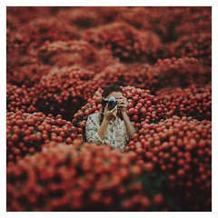 to see anew (Ana Luísa Pinto [Luminous Photography]) Tags: olympus omd10 selfportrait miniature orange tree selfportraitartist selfie camera analuísapinto analuisapinto luminouslu luminousphotography luminous