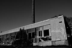 Toxic trace (ReppiX) Tags: toxic lost place blackwhite factori old factory fabrik rotten canon 200d blackandwhite bw architektur monochrome