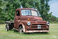 Dodge Truck, Delaware, Eastern Shore (adamkmyers) Tags: rust truck classictruck dodge delmarvamdelaware