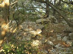 Крим, Таврські могильники на горі Кішка InterNetri Ukraine 2009 143