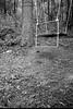 swing, hillside, forest, Community Park at Craggy Park, Asheville, NC, Kodak VR35 K12, Kodak TMAX 400, Ilford Ilfosol 3 developer, 5.15.18 (steve aimone) Tags: swing hillside forest communityparkatcraggypark westasheville northcarolina kodakvr35k12 kodaktmax400 ilfordilfosol3developer pointandshoot 35mm 35mmfilm film landscape blackandwhite monochrome monochromatic uphill
