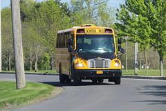 Freeman Bus Corp. #46 (ThoseGuys119) Tags: freemanbuscorp schoolbus watertownny thomasbuilt freightliner fs65 c2 saftliner yellowbumpers
