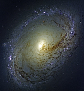 NGC 3368, variant