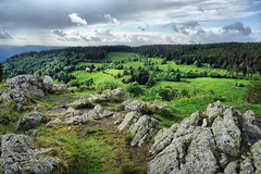 Vosges Mountains (denismartin) Tags: green spring france vosges vosgesmountain lorraine grandest tree flower planois gerbamont menufosse vagney cornimont cloud nature landscape geology denismartin europe