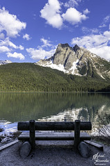 Emerald Lake (mtfernandes.01) Tags: british columbia emerald lake mountain mountains spring bench canada travelphotography nikon nikond850 d850 tree trees clouds cloud