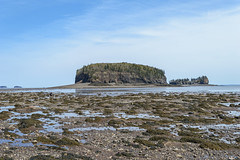Two Islands (TheNovaScotian1991) Tags: twoislands novascotia canada cumberlandcounty bayoffundy islands minasbasin beautiful landscape water reflection bluesky clouds cliffs lowtide incomingtide risingtide nikond3200 afsdxnikkor1855mmf3556gvrii seaweed seafloor rocks pebbles
