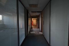 DSC_0566 (Goldie87) Tags: derelict abandoned industrial britishshoecorporation
