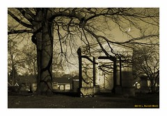 Shade Doze (TooLoose-LeTrek) Tags: monotone cemetery crypt mausoleum death tree shadow