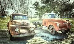 polo's best?...(HTT) (BillsExplorations) Tags: rust truck truckthursday chevrolet ford old vintage oldtruck polo fordtruck chevrolettruck firetruck