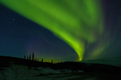 Northern lights (miss_michelle) Tags: aurora auroraborealis canada landscape nightscape northernlights travel winter yukon