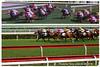 IMG_0396 (2) (smartlamhk) Tags: 沙田馬場 馬場 跑馬 賽馬 賽事 馬匹 馬會 騎師 騎馬 騎士 賽馬會 投注 race horse 禮儀小姐 canon 佳能 panning