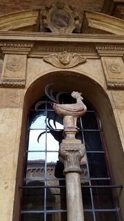 St Pete's chook, Bologna