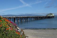 5/7/18 16:15 (joncosner) Tags: 2018 california halfmoonbay sfbayarea southbay stars3