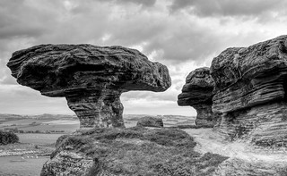 Bonnet Stane black and white