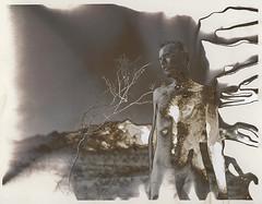 Burned Desert (///Brian Henry) Tags: arizona alternative process analog film kodabromide acid burn darkroom male nude self portrait experimental one kind