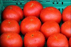 Rosso pomodoro (Maulamb) Tags: pomodori rosso verdura