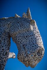 Face (G. Warrink) Tags: visitscotland scotland alba scotspirit scotlandsbeauty thisisscotland hiddenscotland lovescotland findingscotland beautiful horses sculpture lock falkirk kelpies canal horse strength pride