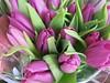 Wednesday Colours - Tulips (Pushapoze (NMP)) Tags: flowers fleurs tulips bouquet
