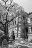 Hyogo House(兵庫県公館) (MMM765 Listener) Tags: hyogo kobe japan monochrome bw 公館 兵庫県公館 兵庫 神戸 日本 nikon d850 2470