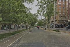 día de lluvia en mi ciudad (Rosa Tomé) Tags: lluvia paisaje calle paseo zaragoza texturas