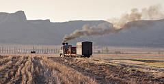 Feldbahn Airstrip (goremirebob) Tags: trains railways steam southafrica sandstone narrowgauge