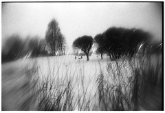 (Veronika Chikalova) Tags: filmph film filmphotography 135mmfilm 35mmfilm ilforddelta3200 ilford ilfordfilm abstract analogphotography analogue people stpetersburg snow surreal trees winter bwphoto bwphotography