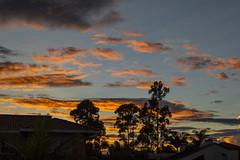 Atardecer (José M. Arboleda) Tags: puestadelsol cielo color luz atardecer nube árbol popayán colombia canon eos 5d markiv ef24105mmf4lisusm josémarboledac