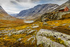 Yellow Land (ozrot) Tags: norway autumn valley lichen sky clouds lake rock