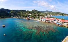 Coral reef in Roatán Harbor, Bay Islands, Honduras (Gail K E) Tags: caribbean roatan bayislands centralamerica tropical caribbeansea coralreef barrierreef republicadehonduras garifunaculture honduras mesoamerican islasdelabahia