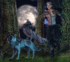 running with the wolves (CodyAdored) Tags: