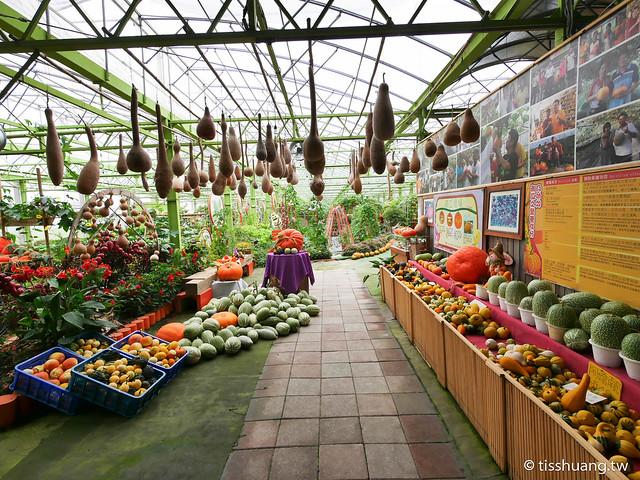 旺山休閒農場-1260996