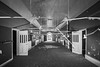 Welcome to the Asylum (Craig Hannah) Tags: sunnysideroyalhospital asylum montroselunaticasyluminfirmarydispensary blackandwhite monochrome montrose derelict decay abandoned derelectbuilding hospital ward scotland craighannah may 2018 uk tunnel doors light