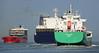 SAGA BEIJA-FLOR , SELANDIA SEAWAYS & ARKLOW MARSH (kees torn) Tags: arklowmarsh arklow selandiaseaways sagabeijaflor dfdsseaways dfds hoekvanholland nieuwewaterweg ferry