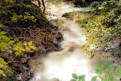 Corriente de agua (Moraima.OO) Tags: agua rivier stroom corriente naturaleza natuur water
