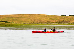 MSL_7943 (professormleung) Tags: montereybay blur grass water boat landscape sky