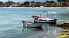 IMG_20180420 - mare di primavera (molovate) Tags: mare spiaggia barca molo tafme passerella molettto volate mondello xiaomi redmi note3 persone acqua baia albero
