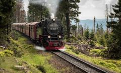 Full Steam (Klummen) Tags: wood rail steamtrain d nikond750 railway train germany nikkor2470 locomotive accending running harz steam narrowgauge