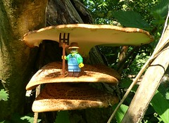 Sunroof (captain_joe) Tags: toy spielzeug 365toyproject lego series15 minifigure minifig farmer pilz fungi baumpilz