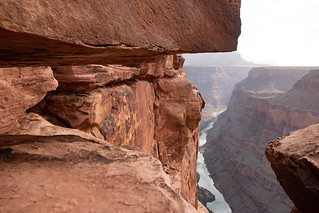 Clinging To the Edge - Grand Canyon