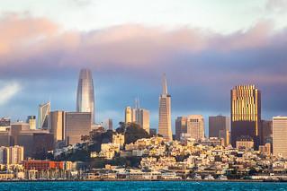 San Francisco Days, San Francisco Nights