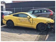 Ford Mustang destroyed (xxx-NICO-xxx) Tags: noir jantes wheels black amarillo scratched scratches griffée griffé jaune yellow epave épave destroyed détruite crashed crash accidenté accidentées accidentée litres liter 5 50 mustang ford
