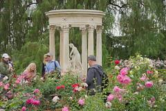 D75_3447 (joezhou2003) Tags: huntington rose garden architecture nikon d750 24120mm vr